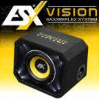 ESX Vision VE 200 - 20cm Bass Woofer Bassreflex Gehäuse Subwoofer Bassbox VE200