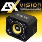 ESX Vision VE 250 - 25cm Bass Woofer Bassreflex Gehäuse Subwoofer Bassbox VE250