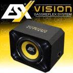 ESX Vision VE 300 - 30cm Bass Woofer Bassreflex Gehäuse Subwoofer Bassbox VE300